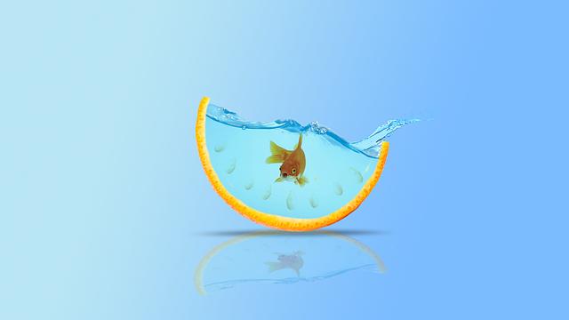 vyplašená rybička